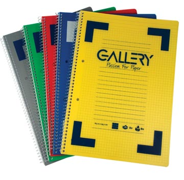 Gallery cahier à reliure spirale Traditional A4, 4 trous, ligné, couleurs assorties, 160 pages